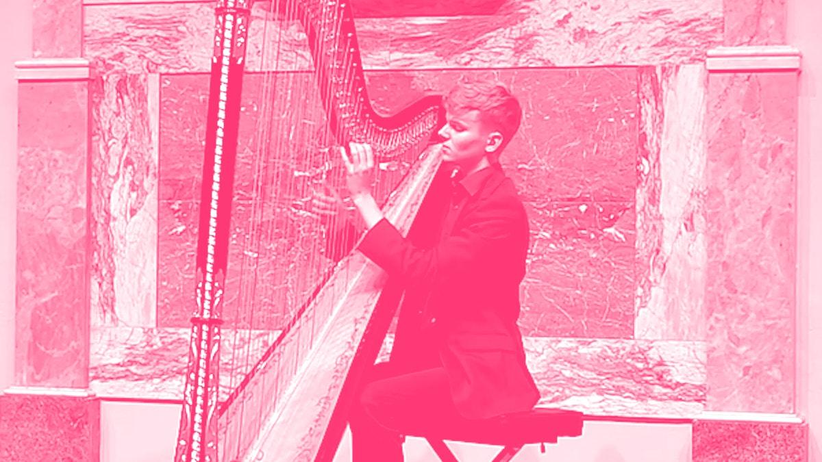 Joost Willemze speelt harp